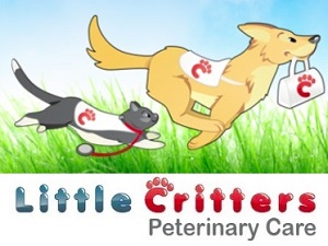 Little-Critters-Logo-Final